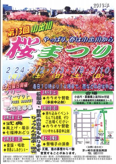 茅ヶ崎の小出川のお花見のフライヤー
