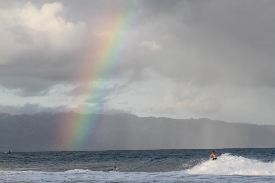 ハワイ サーフィン 動画